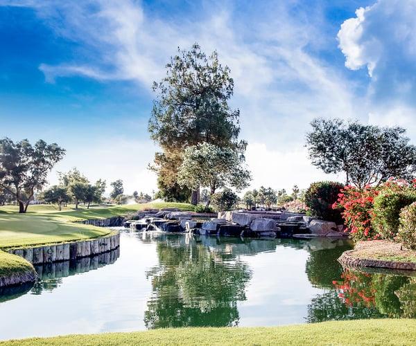 Ocotillo Oasis by Wedgewood Weddings
