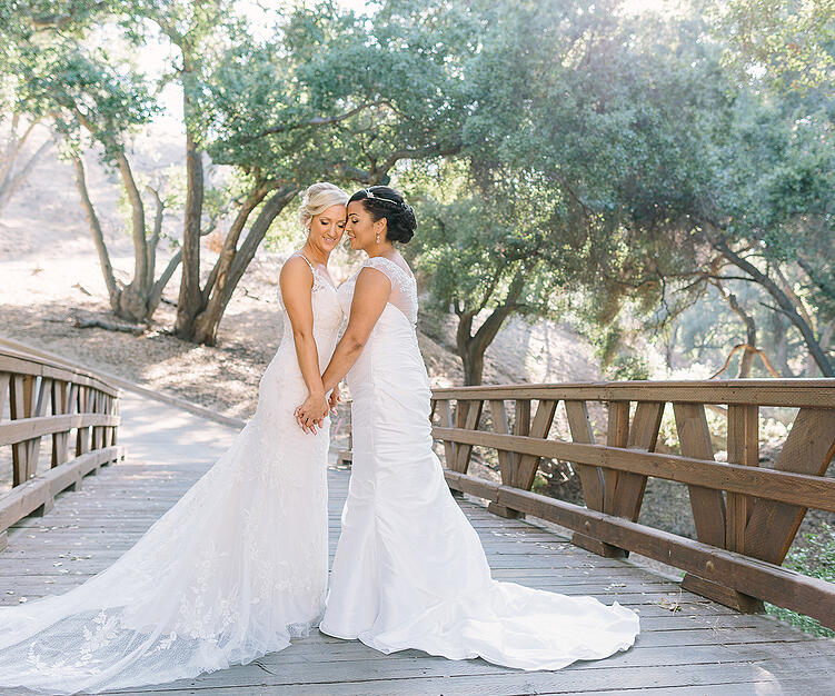 The beautiful CA landscape at Vellano Estate is perfect for bridal portraits
