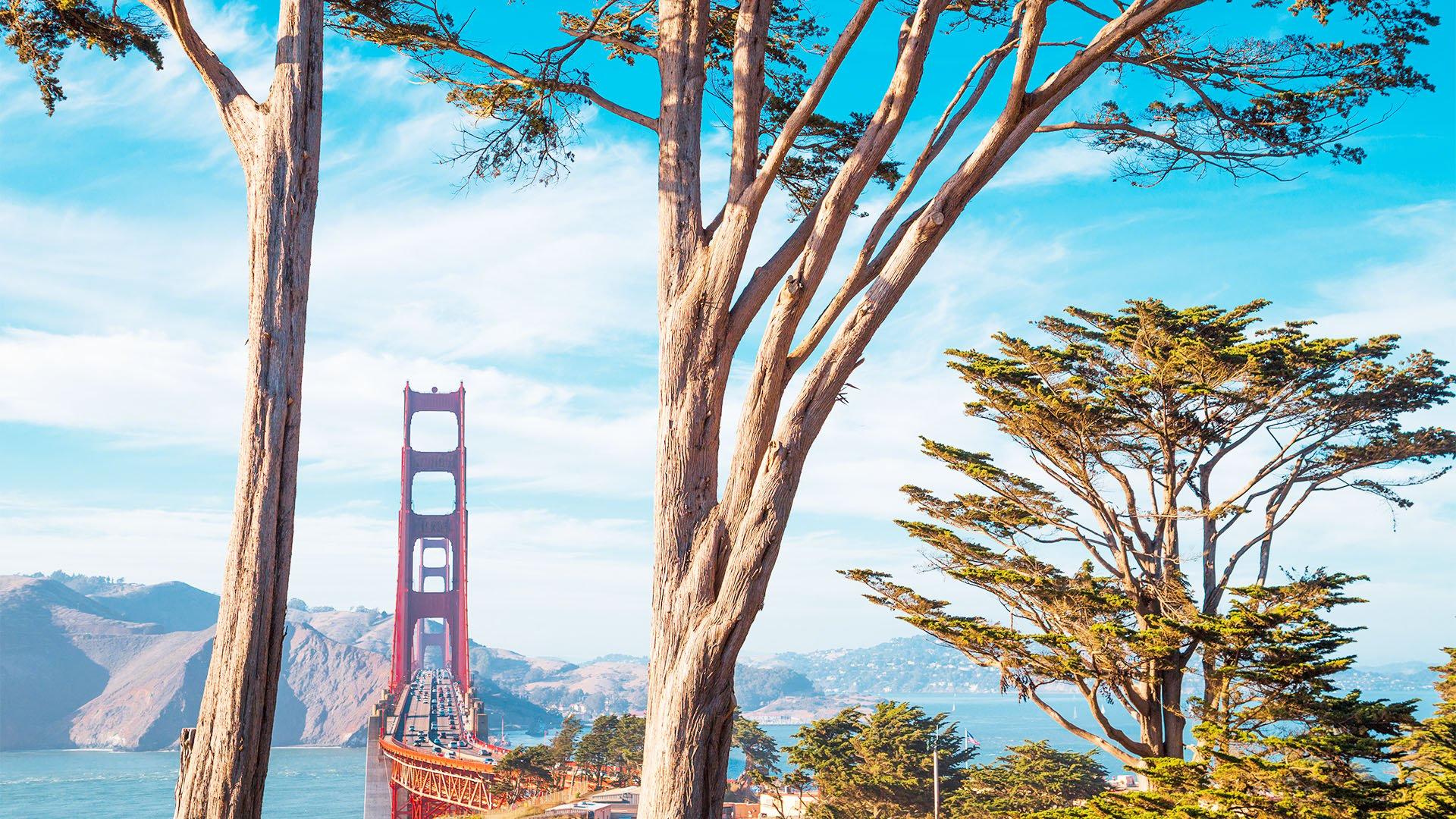 Gorgeous San Francisco Wedding Venues