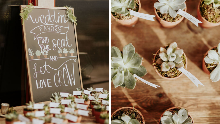 Succulent wedding favors at Boulder Ridge by Wedgewood Weddings