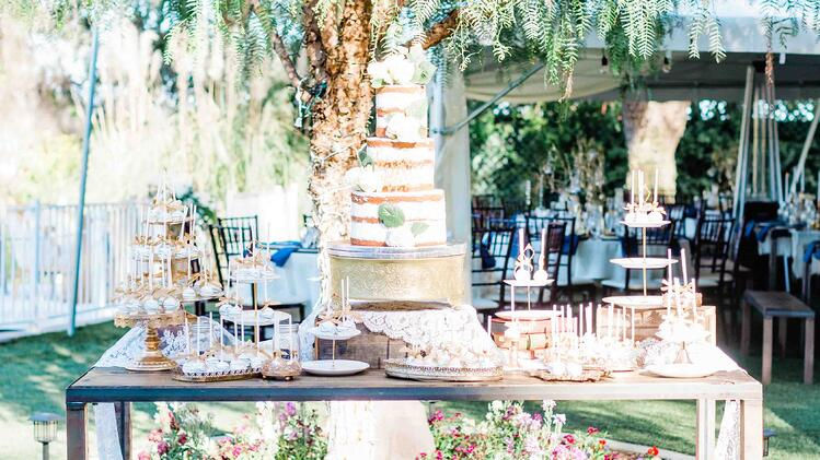A stunning naked wedding cake and cake pops