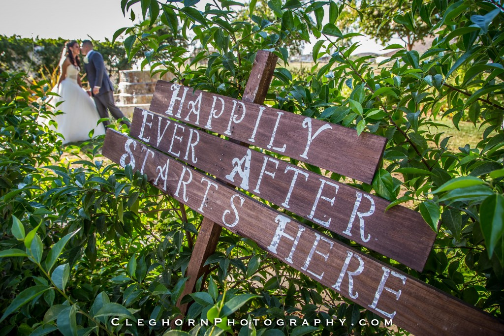 Happily ever after DIY wedding sign