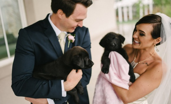 Bride and groom with puppies at their wedding - Ken Caryl - Littleton, Colorado - Arapahoe County - Wedgewood Weddings