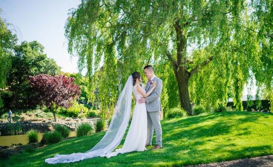 Lush greens - StoneTree - Novato, California - Marin County - Wedgewood Weddings