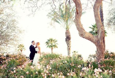 Bride and groom - Palm Valley - Goodyear, Arizona - Maricopa County - Wedgewood Weddings