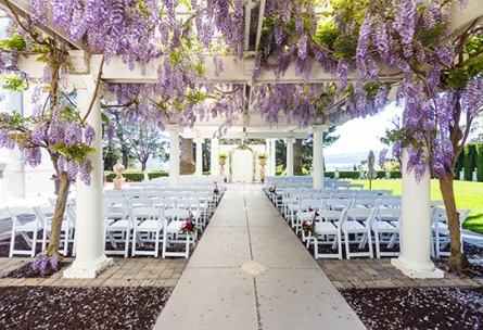 Wisteria Ceremony site - Jefferson Street Mansion - Benicia, California - Solano County - Wedgewood Weddings