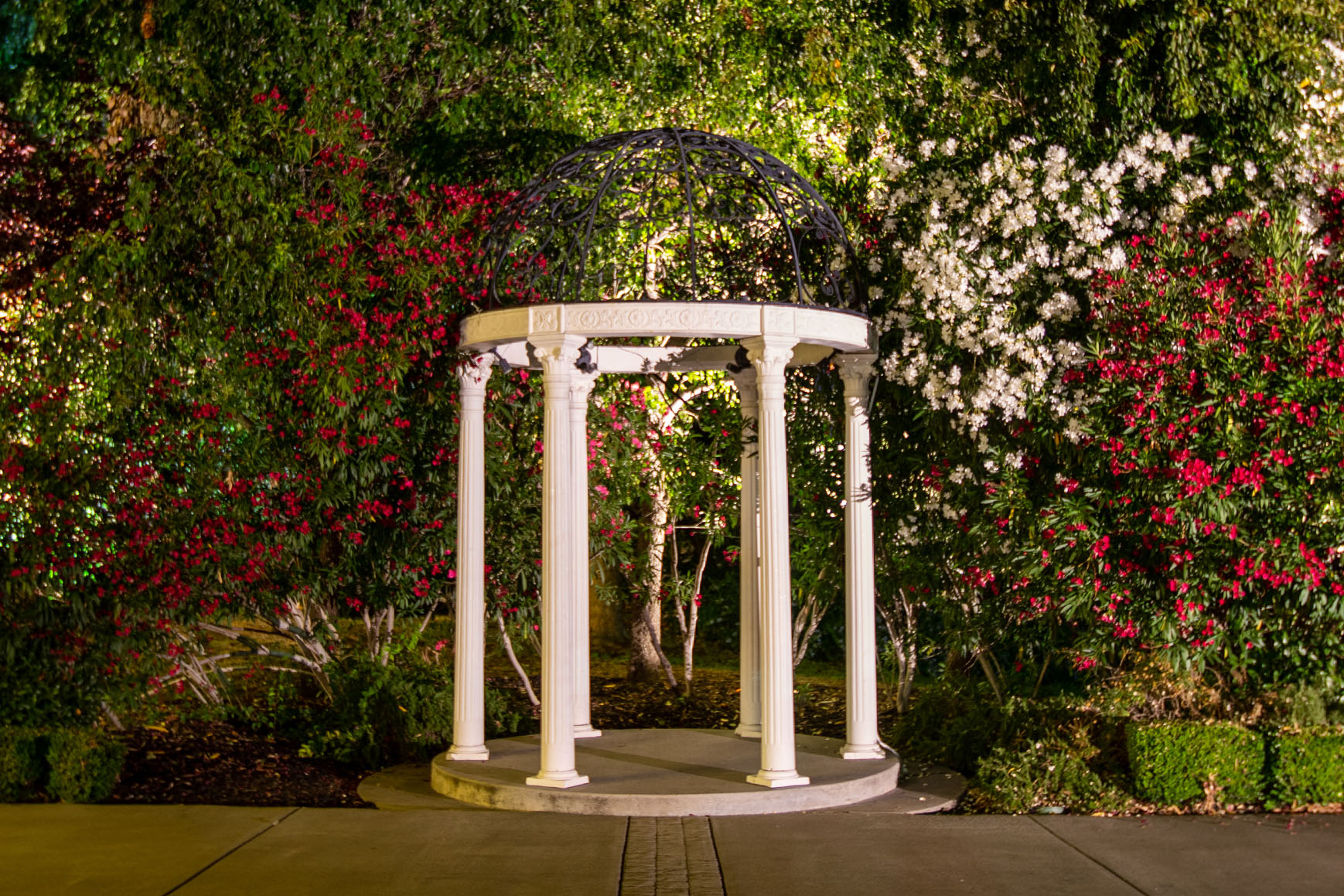 Garden Site at Night - Brentwood - Brentwood, California - Contra Costa County - Wedgewood Weddings