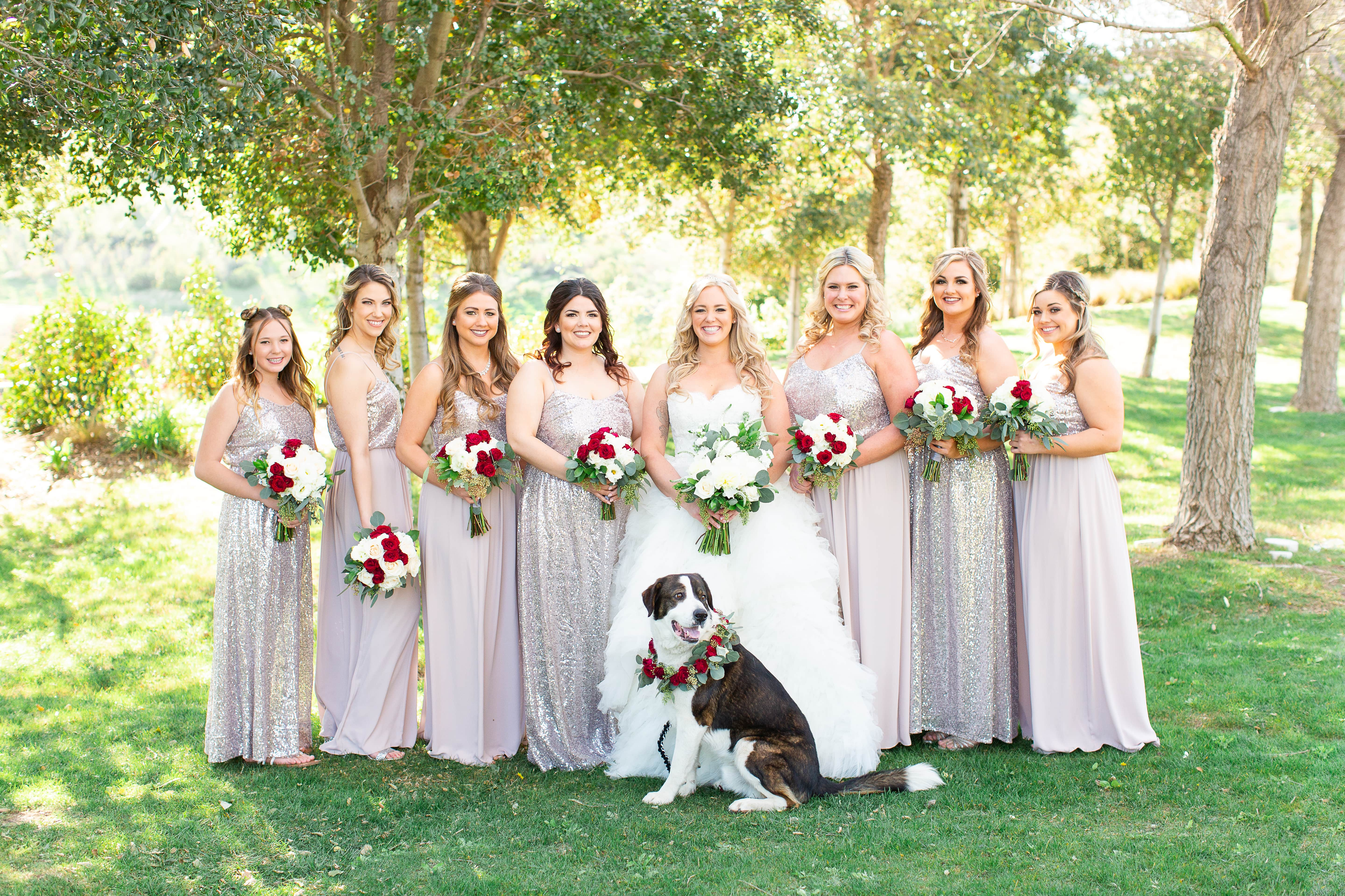 bridal party with dog at Vellano Estate