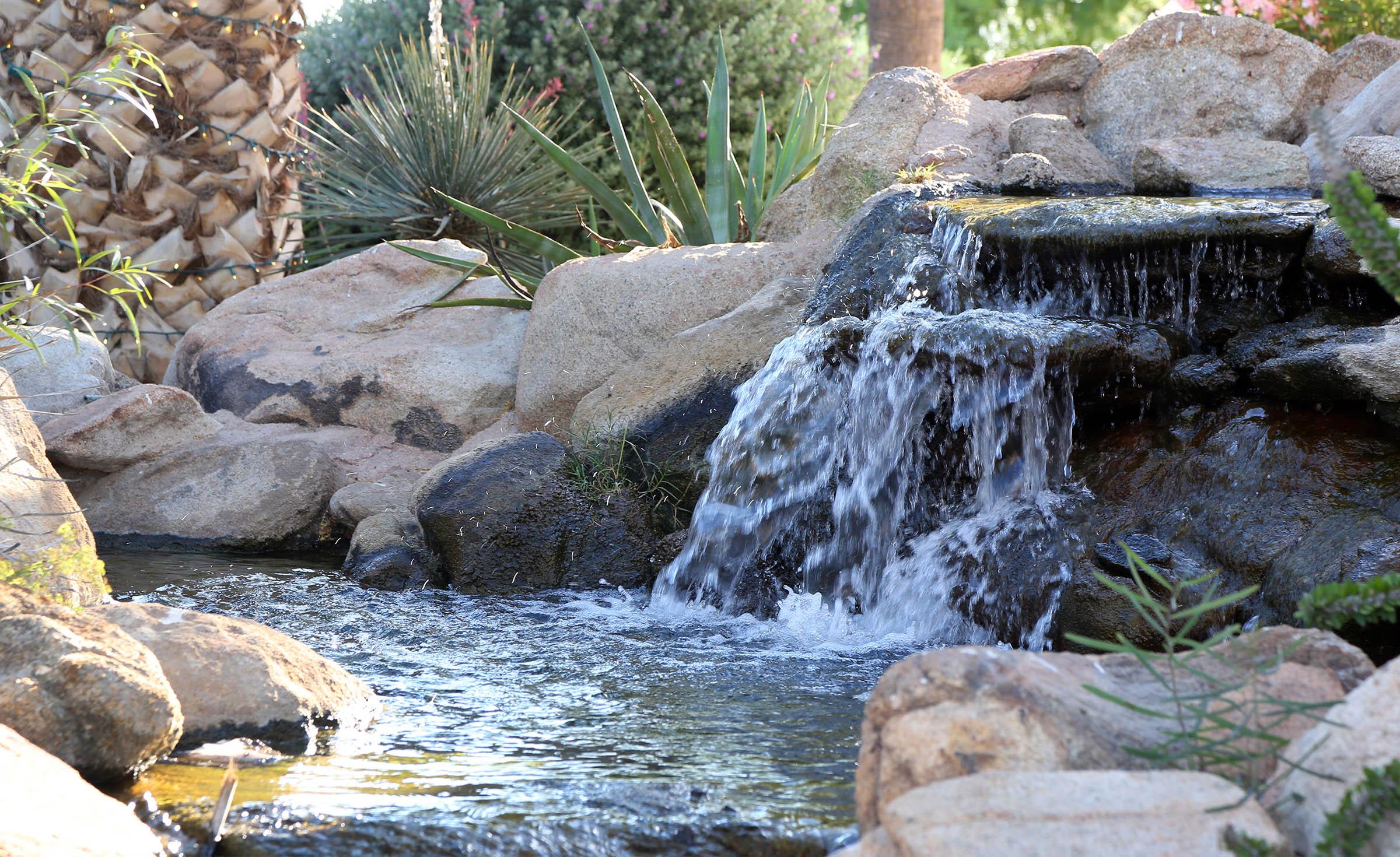 Waterfall - Palm Valley - Goodyear, Arizona - Maricopa County - Wedgewood Weddings