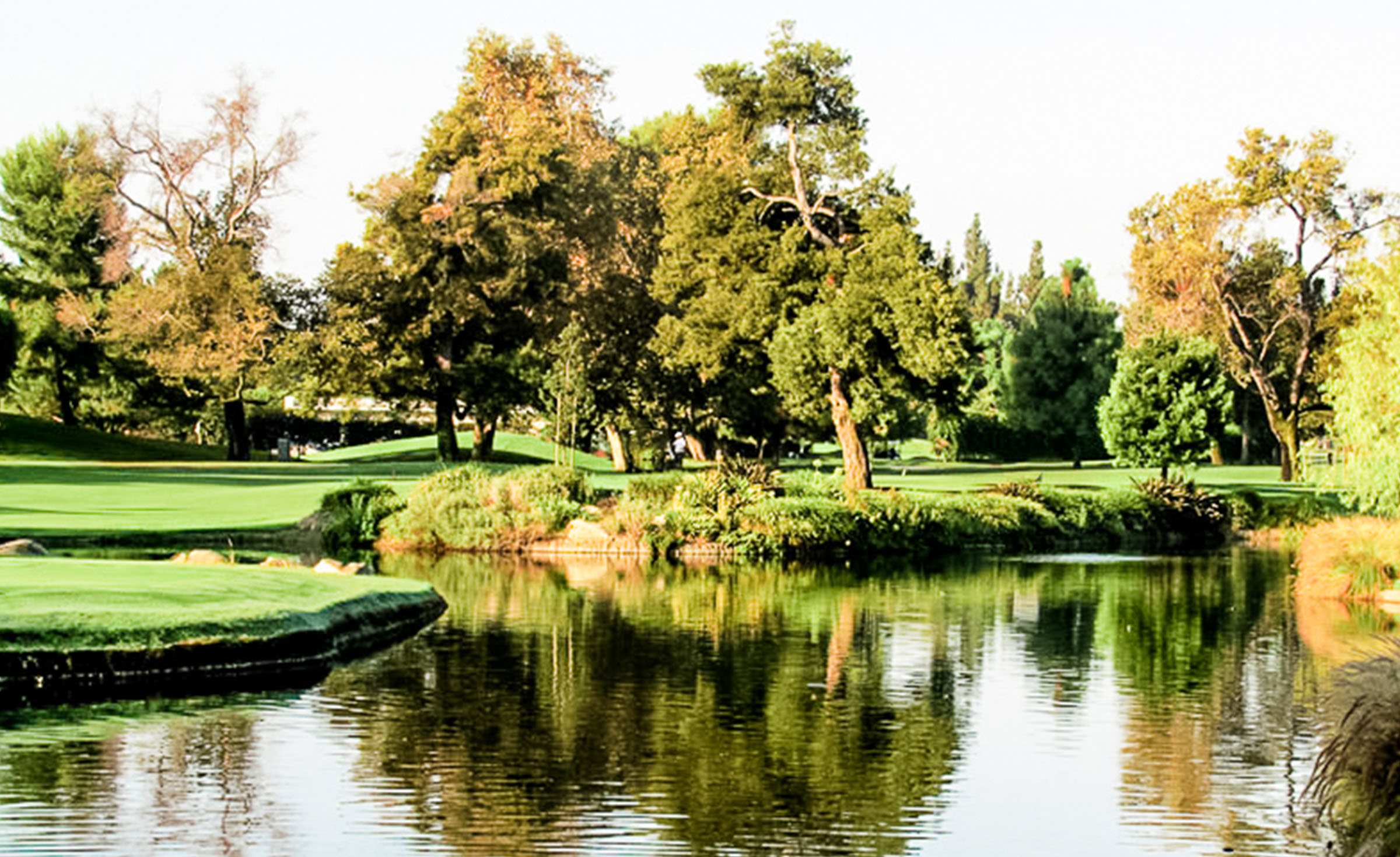 Lush Greenery -  Rio Hondo - Downey, California - Los Angeles County - Wedgewood  Weddings