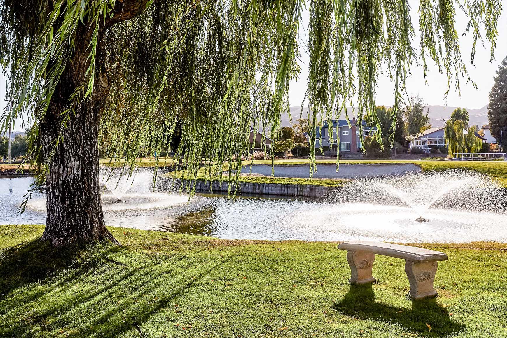 Ceremony Site - San Ramon - San Ramon, California - Contra Costa County - Wedgewood Weddings